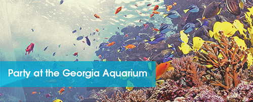 Party at the Georgia Aquarium